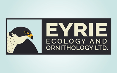 Welcome to Eyrie Ecology and Ornithology